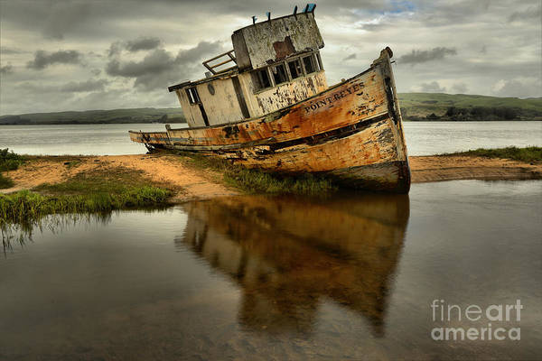 Photograph - Past Her Prime by Adam Jewell