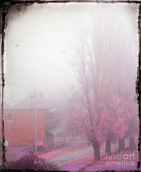 Photograph - Pastel Fog by Russell Brown