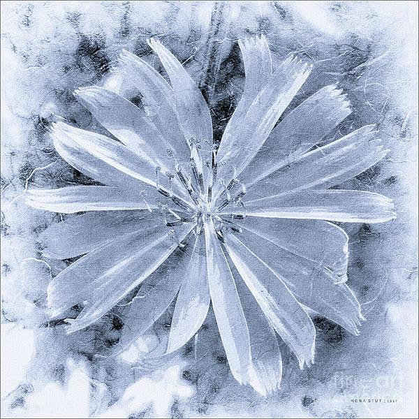 Pastel Purple Blue Daisy Bw Art Print