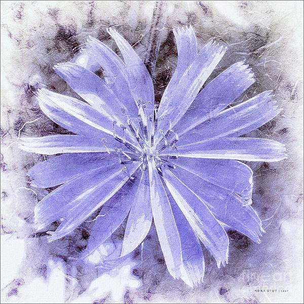 Purple Blue Daisy Art Print