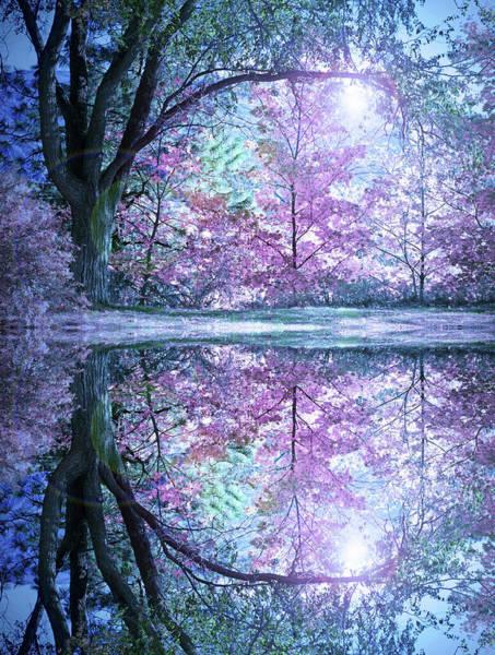 Photograph - Pastel Reflections by Tara Turner