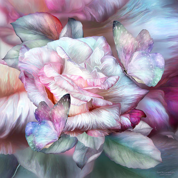 Mixed Media - Pastel Rose And Butterflies by Carol Cavalaris