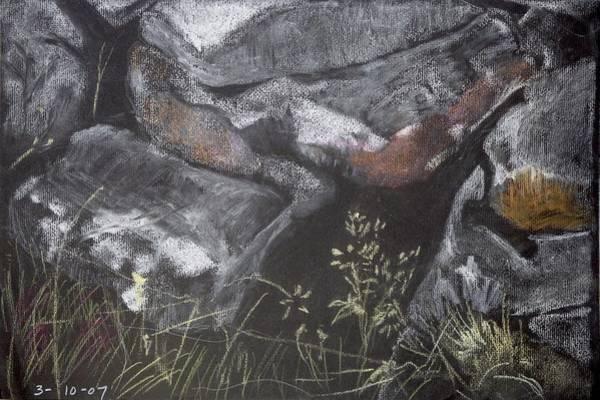 Pastel Stones And Plants On Black Art Print
