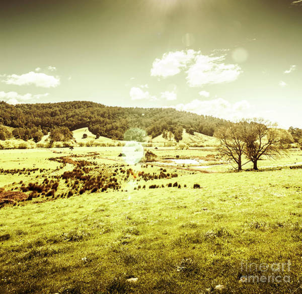 Wall Art - Photograph - Pastoral Pyengana by Jorgo Photography - Wall Art Gallery