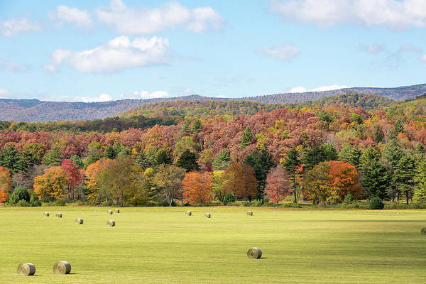 Photograph - Pasture In The Fall by M C Hood