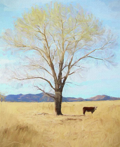 Patagonia Pasture 2 Art Print