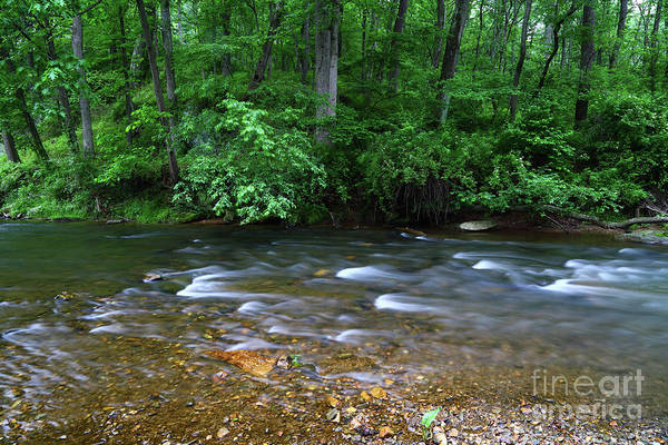 Photograph - Patapsco River Murmurings Maryland by James Brunker
