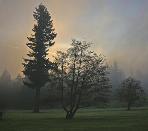 Patchy Morning Fog Art Print
