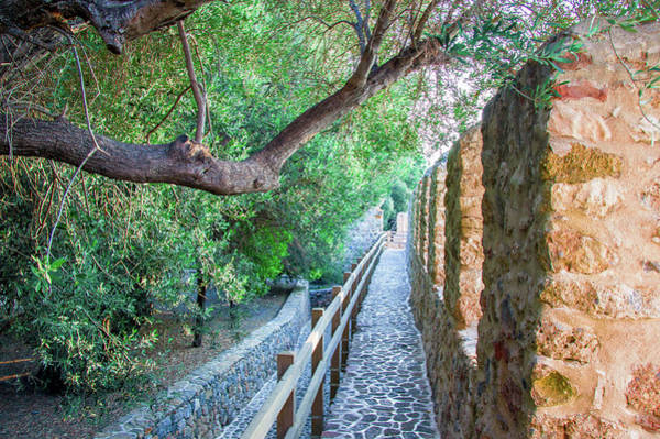 Photograph - Path Along The Castle Wall In Alanya by Sun Travels