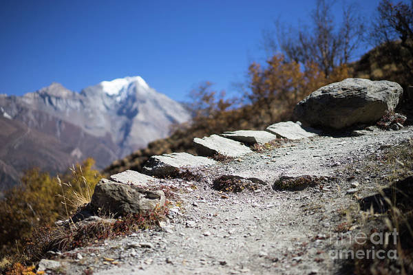 Wall Art - Photograph - Path And Peak In The Himalaya Mountains, Annapurna Region, Nepal by Raimond Klavins