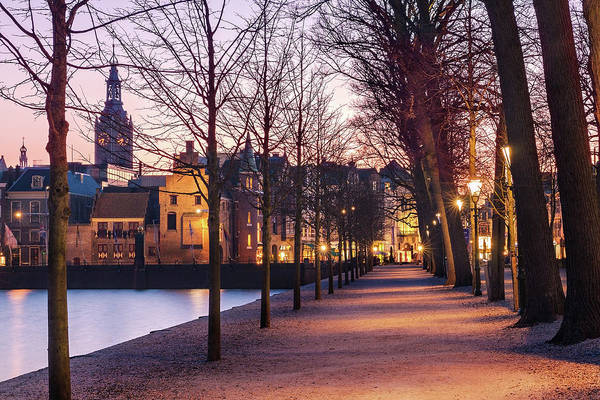 Photograph - Path By A Pond - The Hague by Barry O Carroll