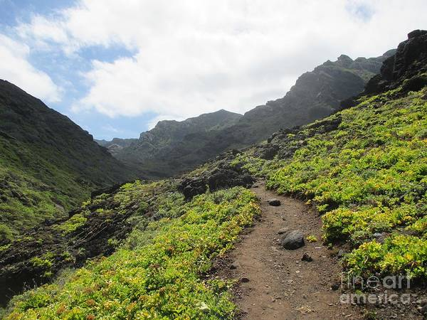 Photograph - Path From Afur To Playa De Tamadiste by Chani Demuijlder