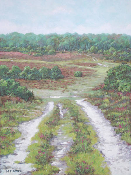 Painting - Path In New Forest  by Martin Davey