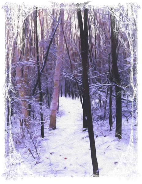 Photograph - Path In The Winter Forest. by Rusty R Smith