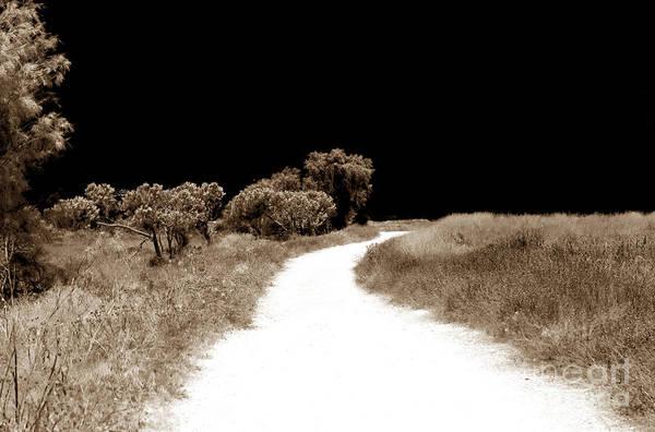 Wall Art - Photograph - Path Into The Dark by John Rizzuto