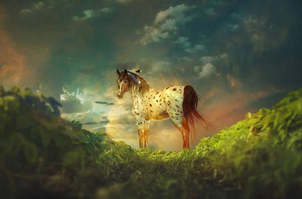 Photograph - Path Of Dreams by Isabella Howard