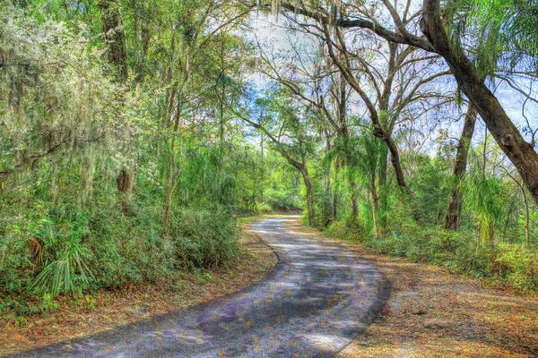 Photograph - Path Through Beauty by John M Bailey