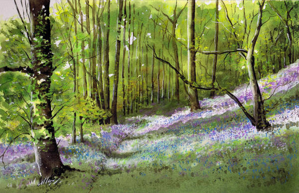 Wall Art - Painting - Path Through Bluebell Wood by Paul Dene Marlor