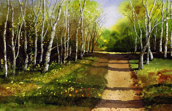 Wall Art - Painting - Path Through Silver Birches by Paul Dene Marlor