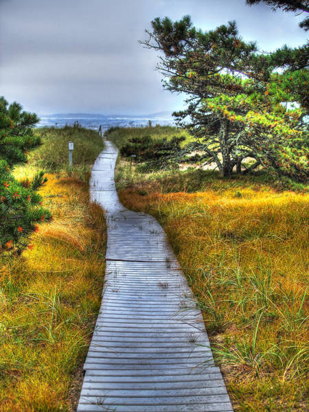 Wall Art - Photograph - Path To Bliss by Tammy Wetzel