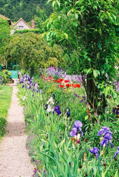 Claude Monet Photograph - Path To Monet's House by Nadine Rippelmeyer