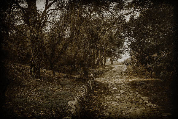 Photograph - Athens, Greece - Path To Philopappos by Mark Forte