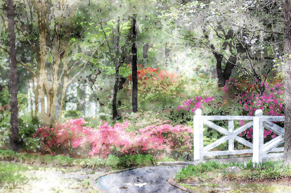 Photograph - Path To The Bridge by Donna Bentley