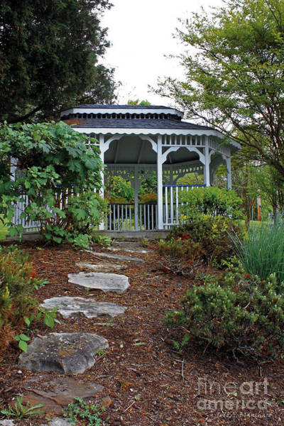 Photograph - Path To The Gazebo by Todd Blanchard