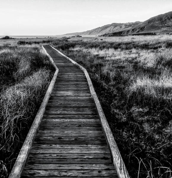 Wall Art - Photograph - Path To The Sea In Black And White by Garry Gay