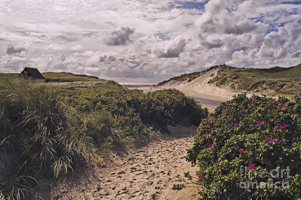 Wall Art - Photograph - Path To The Sea by Wedigo Ferchland