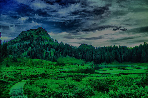Montain Photograph - Path To Tipsoo Lake by Jeff Swan