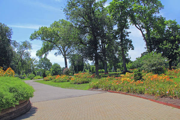 Photograph - Pathway At Franklin Park by Angela Murdock