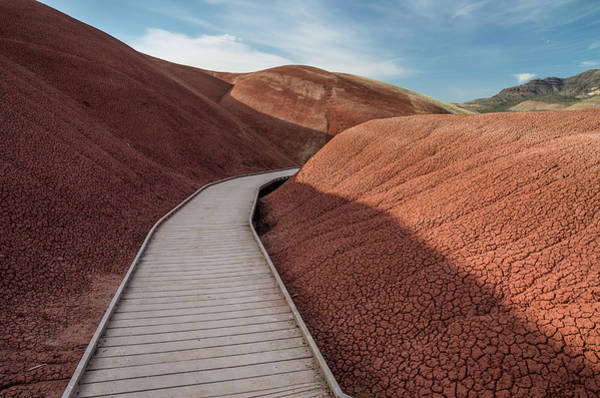 Oregon Ridge Photograph - Pathway Through The Reds by Greg Nyquist