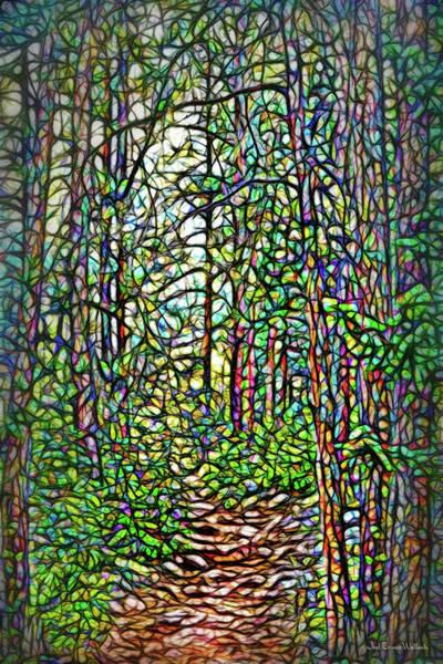 Digital Art - Pathway To Enchantment by Joel Bruce Wallach