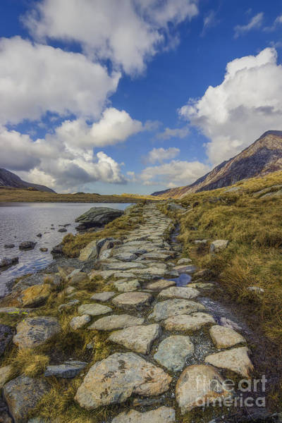 Photograph - Pathway To Heaven by Ian Mitchell