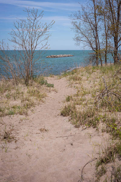 Photograph - Pathway To Lake Erie by Terry DeLuco