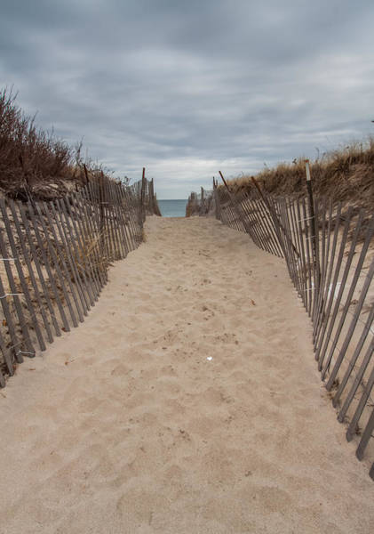 Photograph - Pathway To The Beach by Brian MacLean