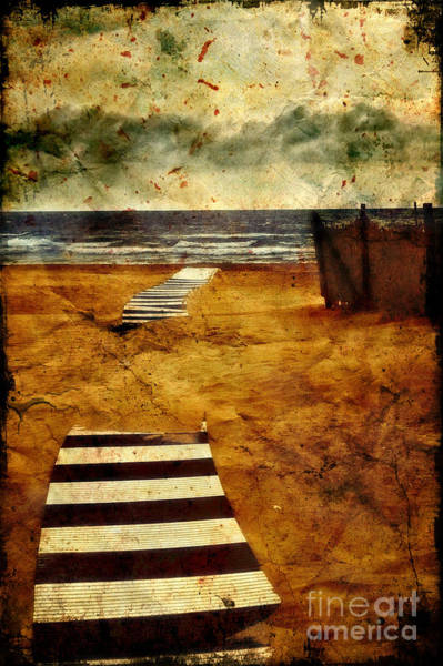 Photograph - Pathway To The Sea II by Silvia Ganora