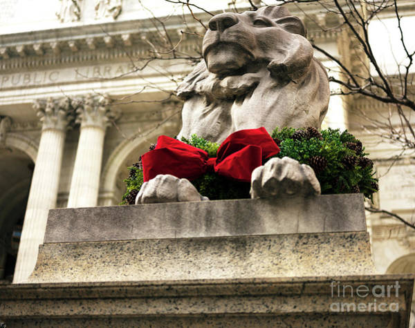 Lion In Winter Photograph - Patience Christmas Wreath New York City by John Rizzuto