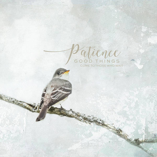 Photograph - Patience Farmhouse Style Bird Art by Jai Johnson