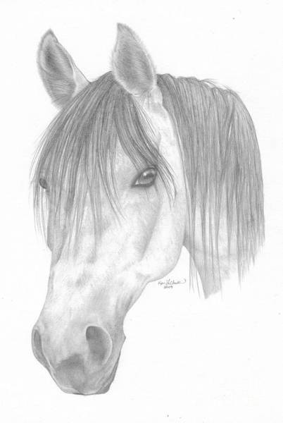 Appaloosa Drawing - Patient Care by Kari Christianson