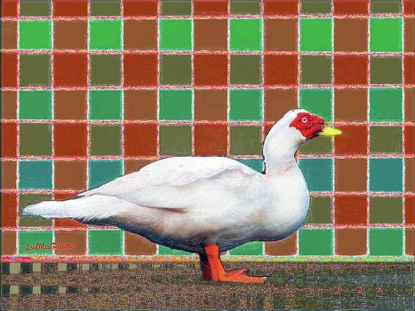 Digital Art - Pato Art 4 by Miss Pet Sitter