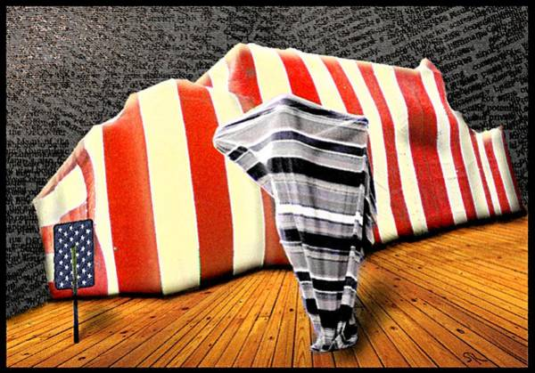 Photograph - Patriot Sack by Steven Robiner