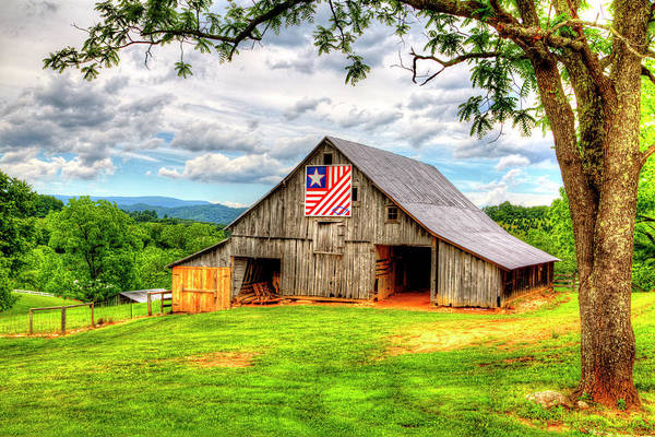 Photograph - Patriotic Emblem by Dale R Carlson