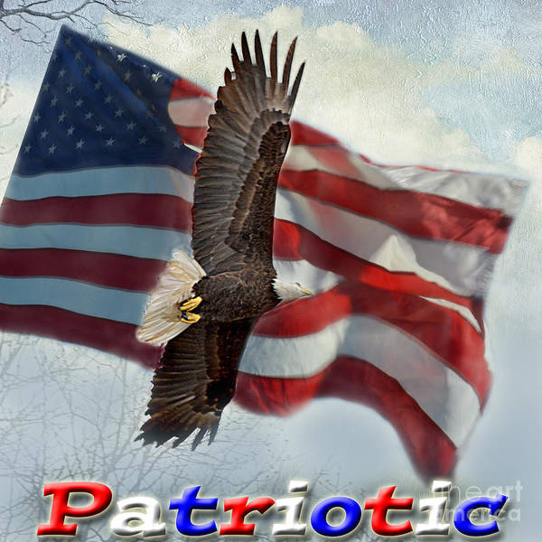 Wall Art - Photograph - Patriotic Logo by Debbie Portwood