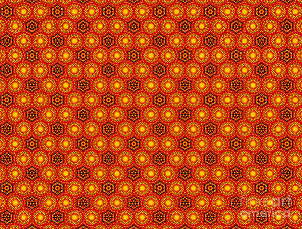 Wall Art - Photograph - Pattern From A Sunflower By Kaye Menner by Kaye Menner