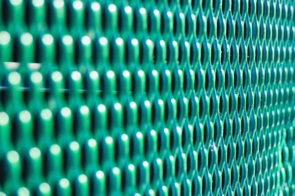 Photograph - Pattern In Green by Christi Kraft