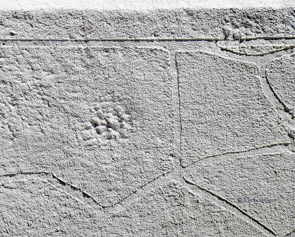 Photograph - Patterns On A Concrete Wall by Kae Cheatham