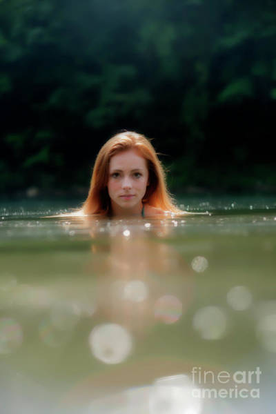 Photograph - Patty Swimming With Head Out Of Water by Dan Friend