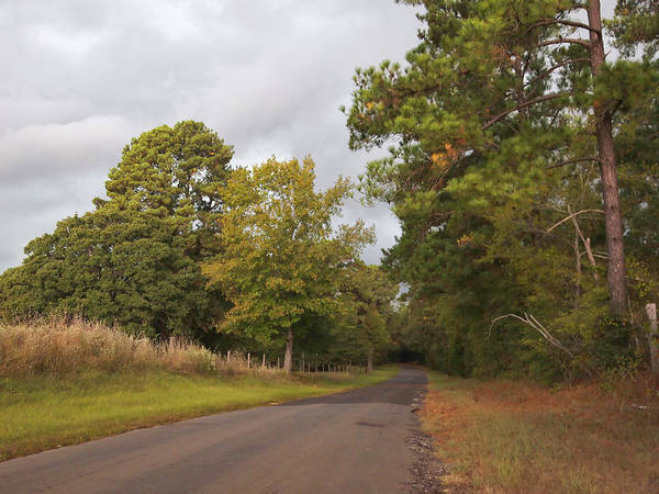 Photograph - Paved Back Road by Charles McKelroy